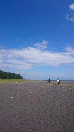 Miho Seacoast (Miho no Matsubara Beach): 海岸の写真