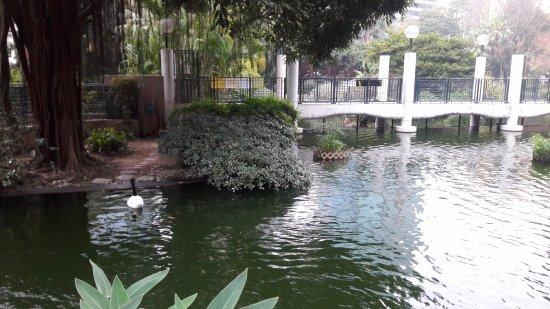 Photo of Park Kowloon Park at 尖沙咀柯士甸道22號, Hong Kong, Hong Kong