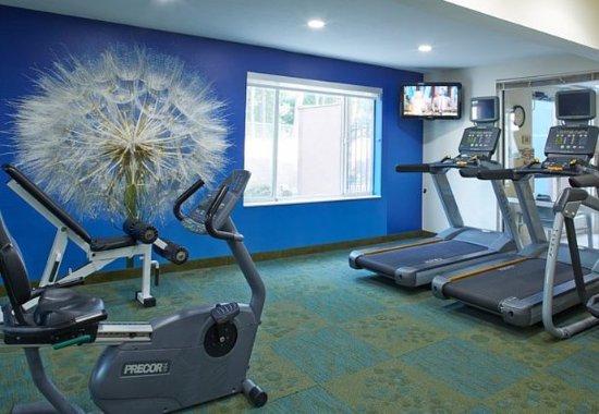 Lithia Springs, Τζόρτζια: Fitness Center - Cardio