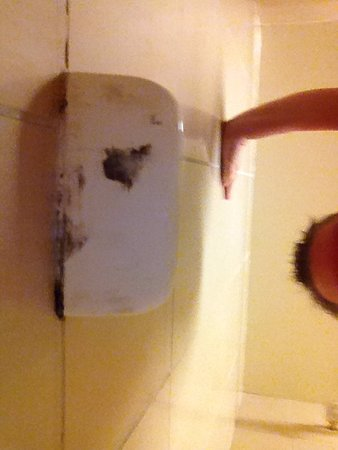 Harrah's Laughlin: Mold under soap dish #1