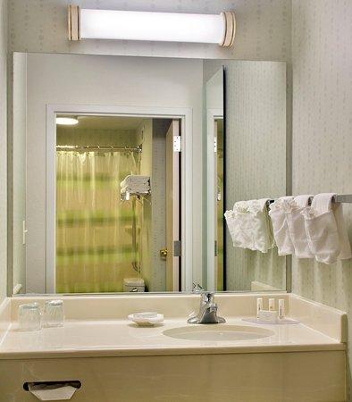 Plymouth Meeting, Pensilvania: Suite Bathroom - Vanity
