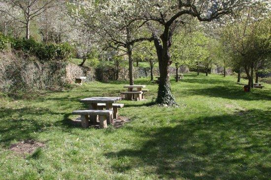 Сент-Эними, Франция: Le parc de l'EDEN au printemps