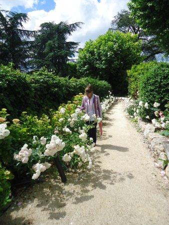 Limonest, Frankrike: Chemin menant du parking à la terrasse et l'entrée de l'hotel