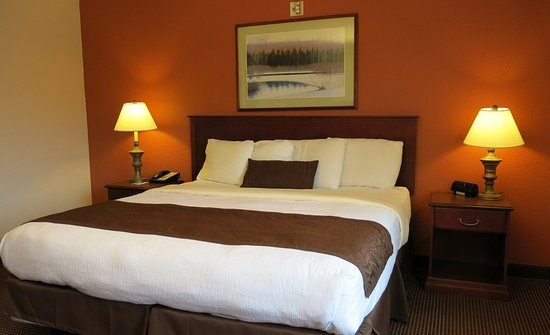 Mounds View, MN: Guest Room
