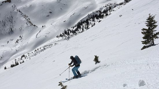 Ophir, CO : Skiing nearby