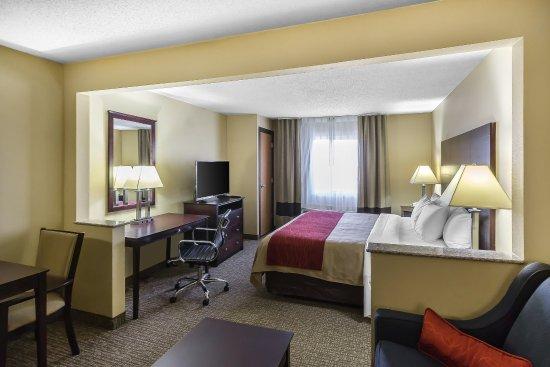 Comfort Inn Austin: Guest Room