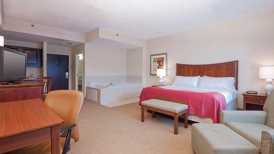 Holiday Inn Flint