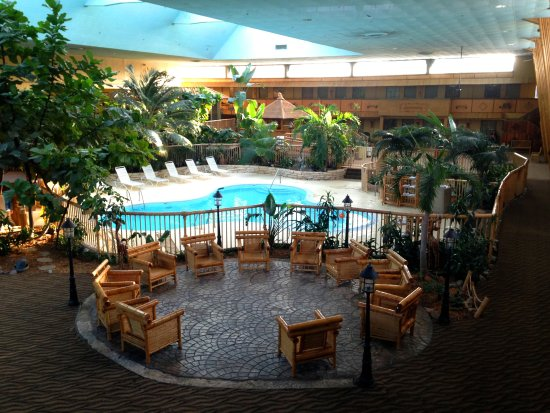 Polynesian Themed Atrium Picture Of Holiday Inn Rolling Meadows Schaumburg Area Rolling