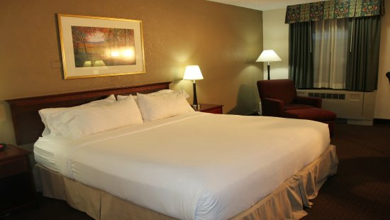 Rolling Meadows, IL: Holidome King Bed Guest Room
