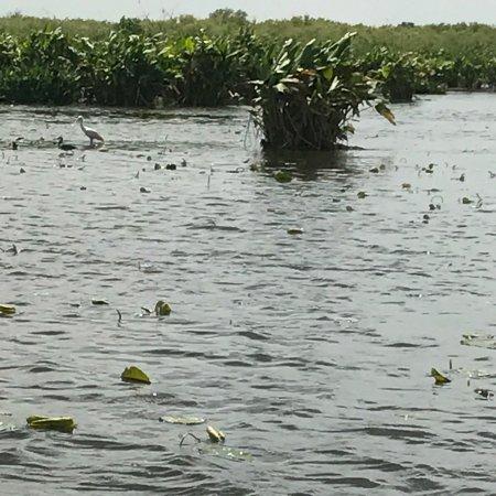 Immokalee, FL: photo2.jpg