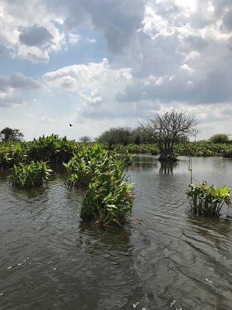 Immokalee, FL: photo3.jpg