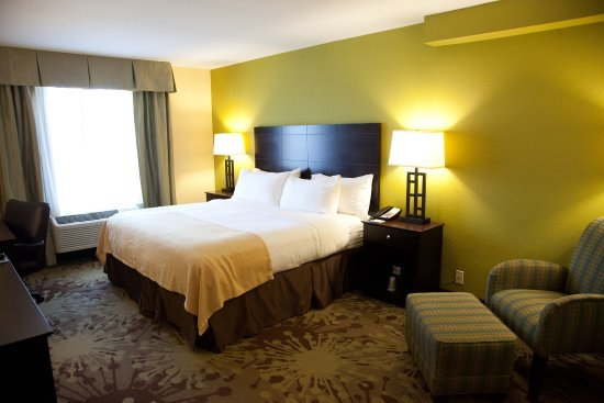 Holiday Inn Gurnee Convention Center: Standard King Guest Room