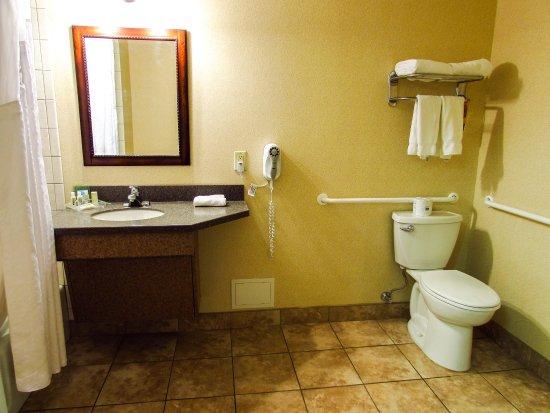 Waterloo, Estado de Nueva York: Handicap Accessible Single Queen Guest Room Bathroom