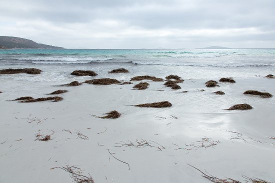 Port Lincoln, Australia: Cape Le Grand beach