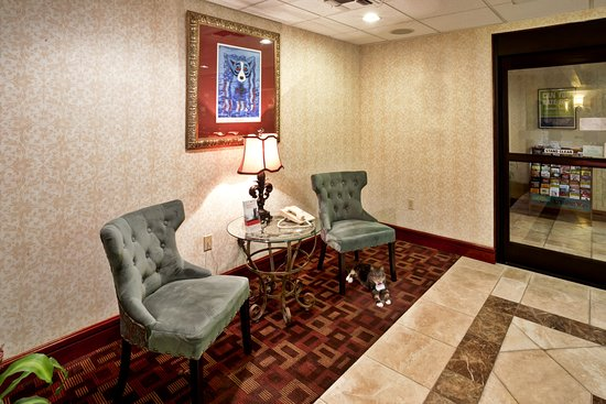Holiday Inn Express Breaux Bridge Lafayette Area Blue Dog Print By George Rodrigue