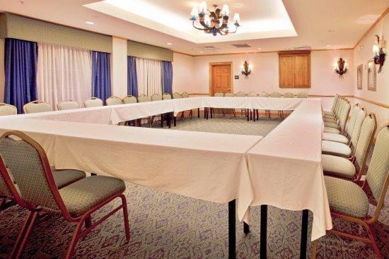 Holiday Inn Express Hotel and Suites Orlando-Lake Buena Vista South: Meeting Room