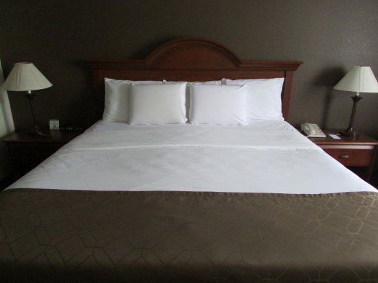 Dollinger's Inn & Suites: Traditional King Room
