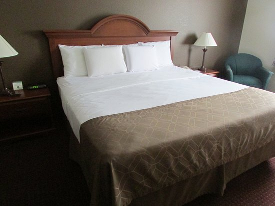 Dollinger's Inn & Suites: King Traditional