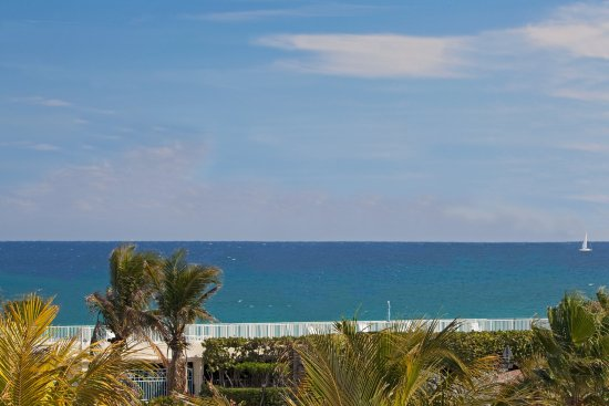 Holiday Inn Express North Palm Beach - Oceanview: Scenery / Landscape