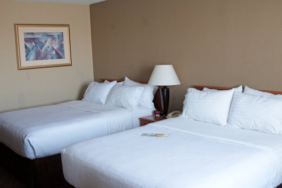 Alexandria, MN: Two queen bedded room (TDBN)