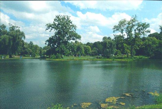 Bolingbrook, إلينوي: ViewPoint 4