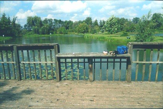Bolingbrook, إلينوي: Viewpoint 6