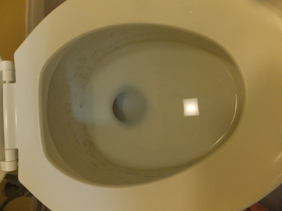 Tecopa, Калифорния: Toilet bowl, inside was so bradly scratched and stained
