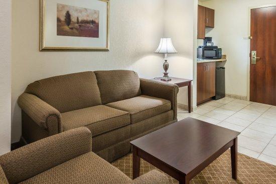 เว็บสเตอร์, นิวยอร์ก: Sleeper Sofas are available in most of our Suites