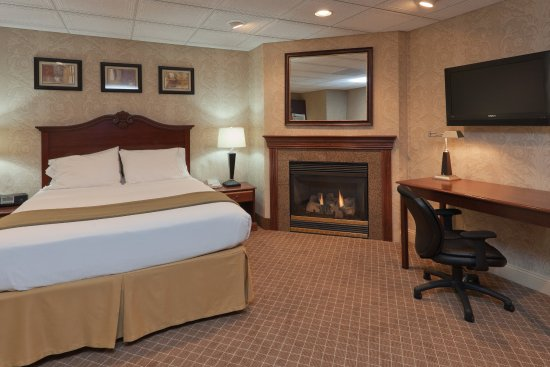 Holiday Inn Express Mentor (Lamalfa Conference Center): Premium Suite with Fireplace