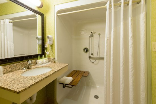 Holiday Inn Express Asheville: Wheelchair Accessible Queen Room with roll in shower