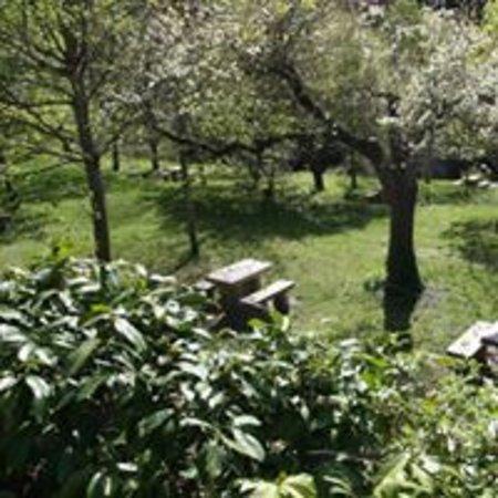 Сент-Эними, Франция: Parc de l'EDEN au printemps depuis la tonnelle