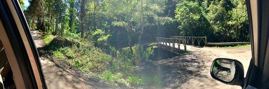 San Gerardo de Dota, Costa Rica: photo2.jpg