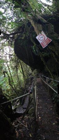 San Gerardo de Dota, Costa Rica: photo3.jpg