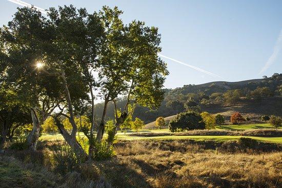 San Martin, CA: Scenic View