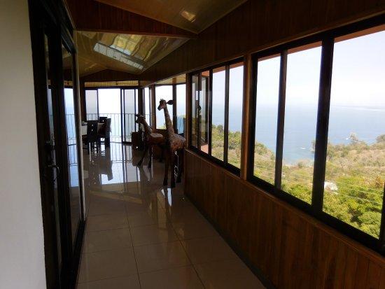 Peace of Paradise: Ocean View Morpho House