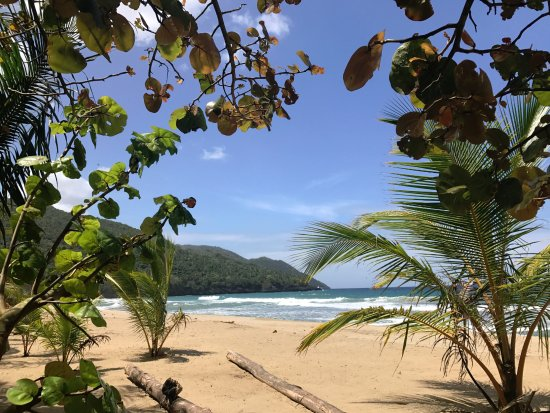 Santa Barbara de Samana, Repubblica Dominicana: The beach