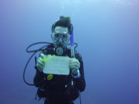 Windwardside, ซาบา: Dive 100 on Saba