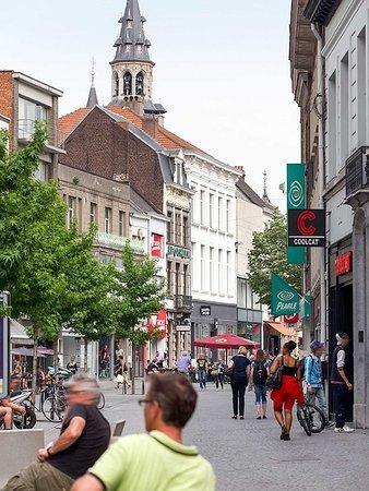 Аалст, Бельгия: Other