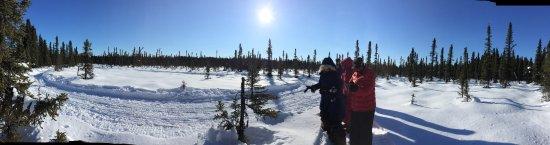 Willow, AK: photo1.jpg