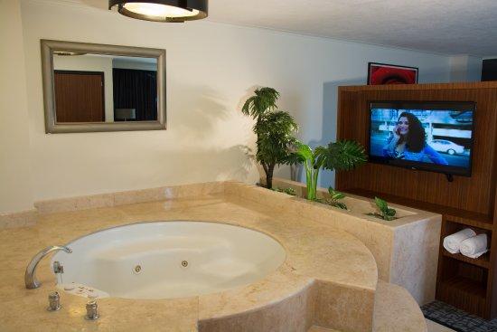 Holiday Inn Ciudad de Mexico Trade Center: Suite