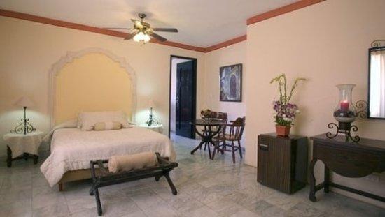 Hotel Casa del Balam : Suite