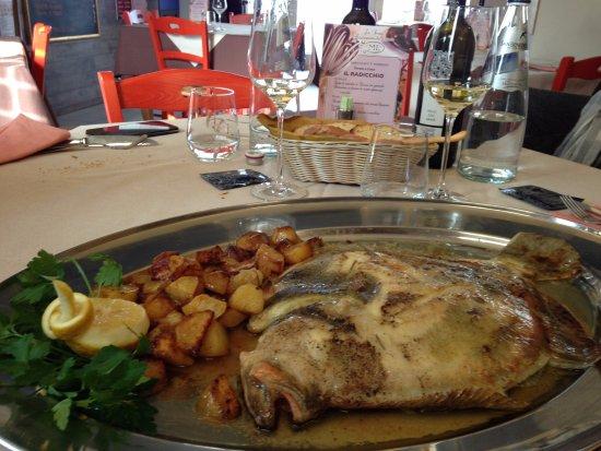Noventa Padovana, إيطاليا: Rombo al forno prima dell'impiattamento