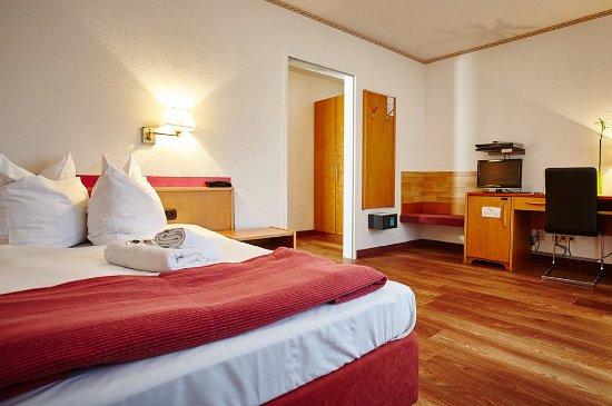 Comfort Hotel Frankfurt Karben: Guest room