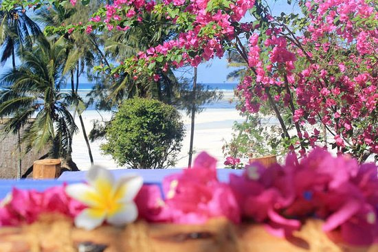Surfescape Village - Zanzibar