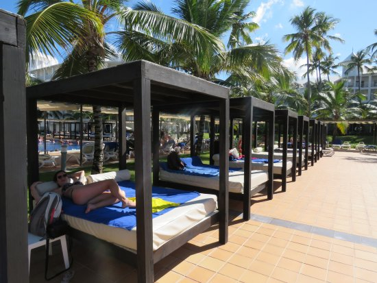 camas frente a la piscina buenisimas photo de hotel riu palace macao punta cana tripadvisor. Black Bedroom Furniture Sets. Home Design Ideas