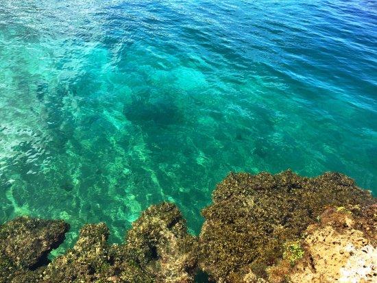 Bocas Town, Panama: photo6.jpg