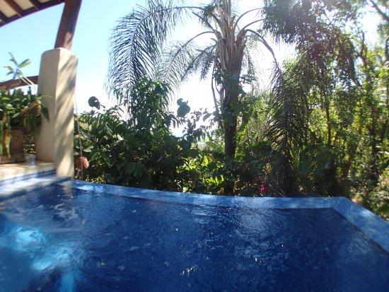 Mal Pais, Costa Rica: Infinity pool