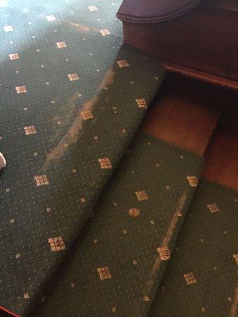 Ruthin, UK: Stair carpet