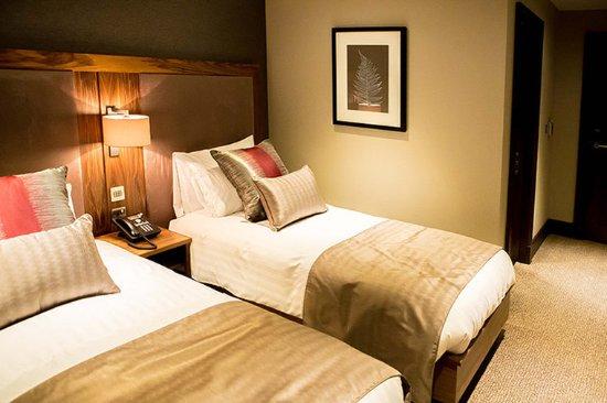 Clarkston, UK: Twin Room