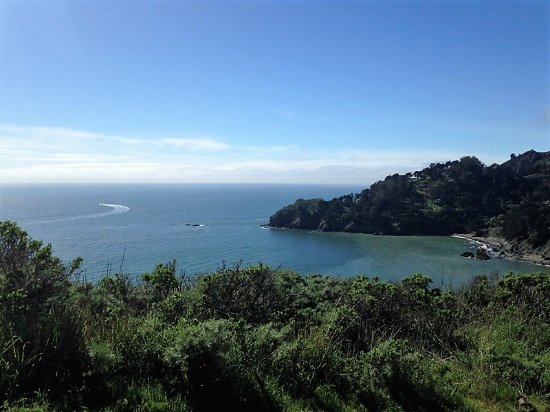 Muir Beach, CA: Gorgeous 360 degree views from atop the hill.